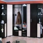 Какой шкаф в коридор выбрать: фото идеи