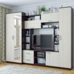 Варианты дизайна шкафа-стенки в зал